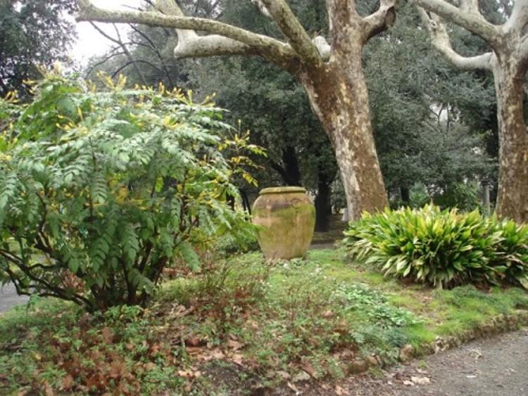 http://italia-ru.com/files/giardino.jpg