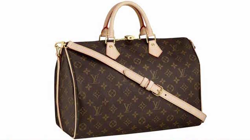 http://italia-ru.com/files/top-10-most-expensive-handbags-brands-in-the-world-2015-louis-vuitton.jpg