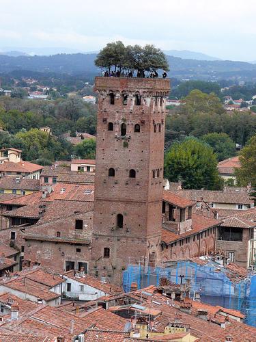 http://italia-ru.com/files/torre_guinigi.jpg