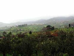 http://www.italia-ru.it/files/toscana6.jpg